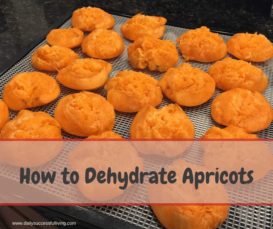 How to Dehydrate Apricots