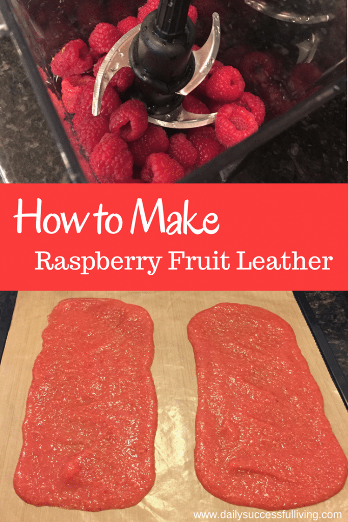 How to Make Raspberry Fruit Leather - Simple Fruit Roll Recipe with pictures to help you make the best berry fruit leather