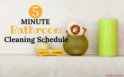 5 Minute Daily Bathroom Cleaning Schedule
