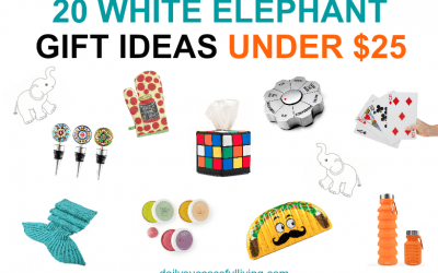 20 Creative White Elephant Gifts Under $25