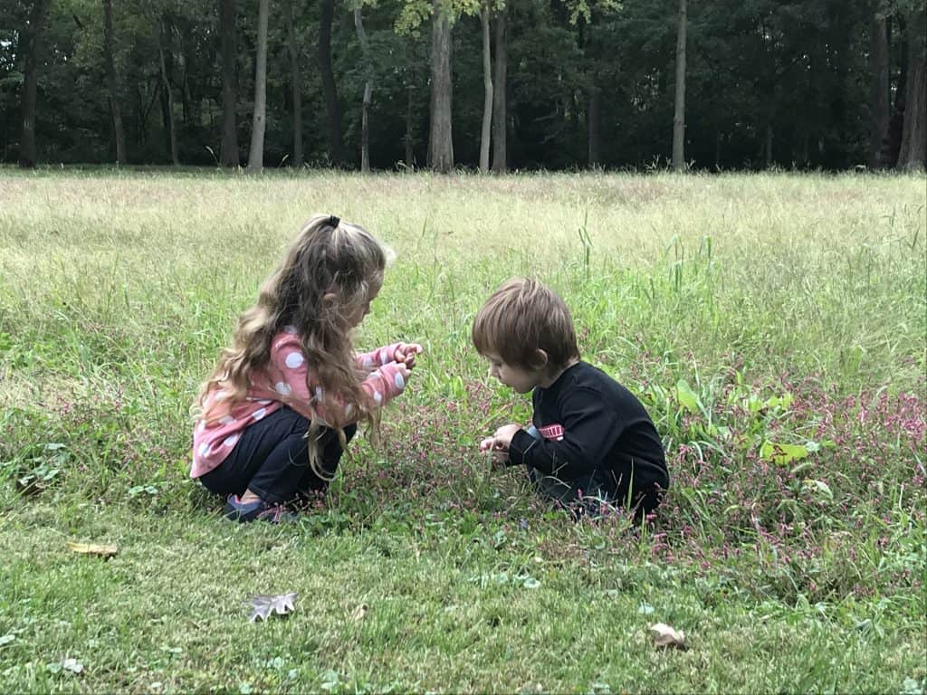 Kids looking at flowers in a field to help them develop an attitude of gratitude.