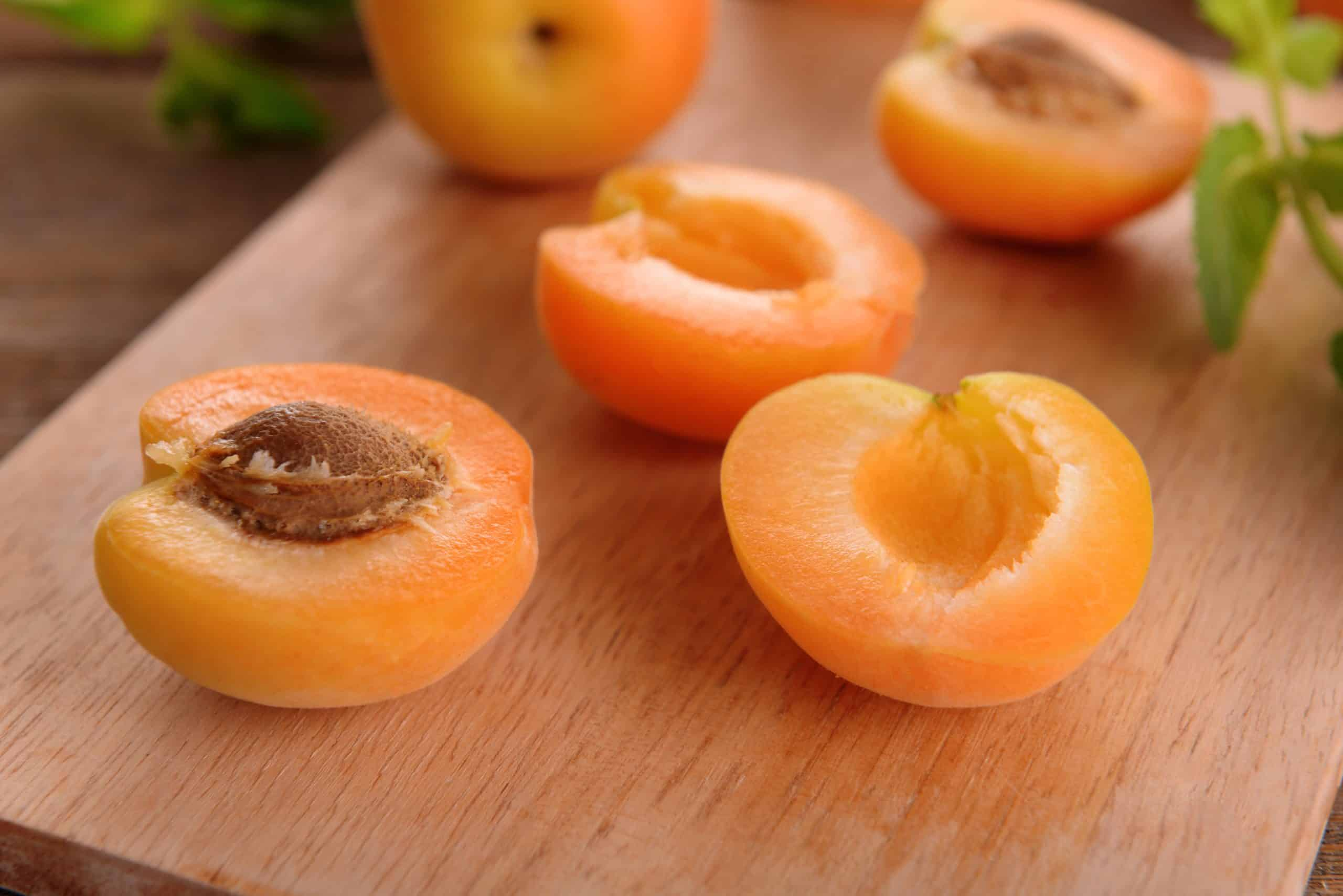 Cutting Apricots so they are ready to be dehydrated